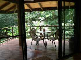 Cape Trib Exotic Fruit Farm Bed and Breakfast - Surfers Paradise Gold Coast