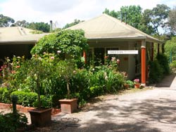 Treetops Bed And Breakfast - Surfers Paradise Gold Coast