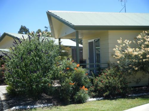 Pepper Tree Cabins - Surfers Paradise Gold Coast