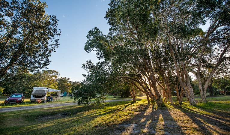 Delicate campground - Surfers Paradise Gold Coast