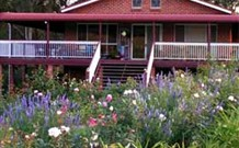 Rose Patch Bed and Breakfast - Surfers Paradise Gold Coast