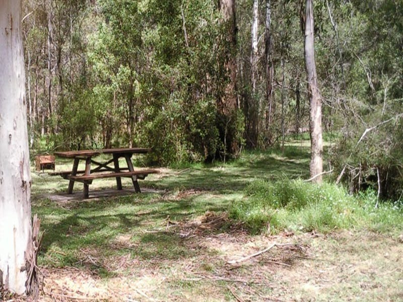 Mulloon Creek campground - Surfers Paradise Gold Coast