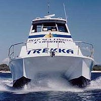 Sunshine Coast Fishing Charters - Surfers Paradise Gold Coast