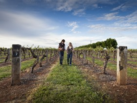 Coonawarra Wineries Walking Trail - Surfers Paradise Gold Coast