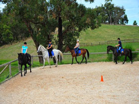 Megan Jones Riding School and Trail Rides - Surfers Paradise Gold Coast