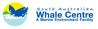 South Australian Whale Centre - Surfers Paradise Gold Coast
