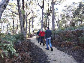 Bridport Walking Track - Surfers Paradise Gold Coast