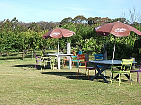 Cerise Brook Orchard  Family Golf - Surfers Paradise Gold Coast