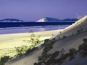 Cooloola Great Sandy National Park - Surfers Paradise Gold Coast