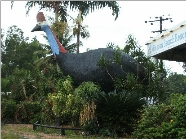 The Big Cassowary - Surfers Paradise Gold Coast