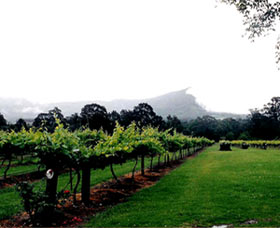 Cambewarra Estate Wines - Surfers Paradise Gold Coast