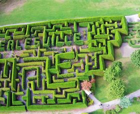 Hedgend Maze and Healesville Laser Sport - Surfers Paradise Gold Coast