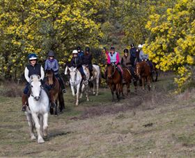 Burnelee Excursions on Horseback - Surfers Paradise Gold Coast