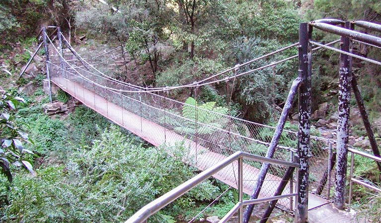 Jenolan River walking track - Surfers Paradise Gold Coast