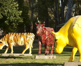 Greater Shepparton's Moooving Art - Surfers Paradise Gold Coast