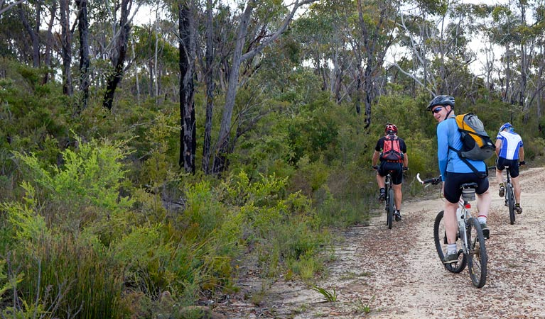 McMahon's Point ride - Wentworth Falls - Surfers Paradise Gold Coast