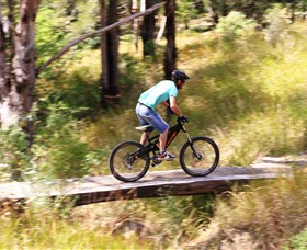 The Steps Mountain Bike Park - Surfers Paradise Gold Coast