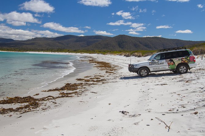 4X4 and Lunch Half Day Bicheno Coastal Mountain - Surfers Paradise Gold Coast