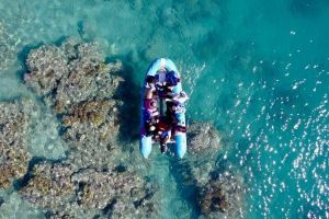 Glass-bottom boat tour with Whitehaven Beach - Surfers Paradise Gold Coast