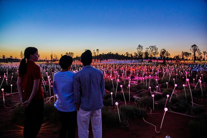 Uluru Field of Light Sunrise Tour - Surfers Paradise Gold Coast