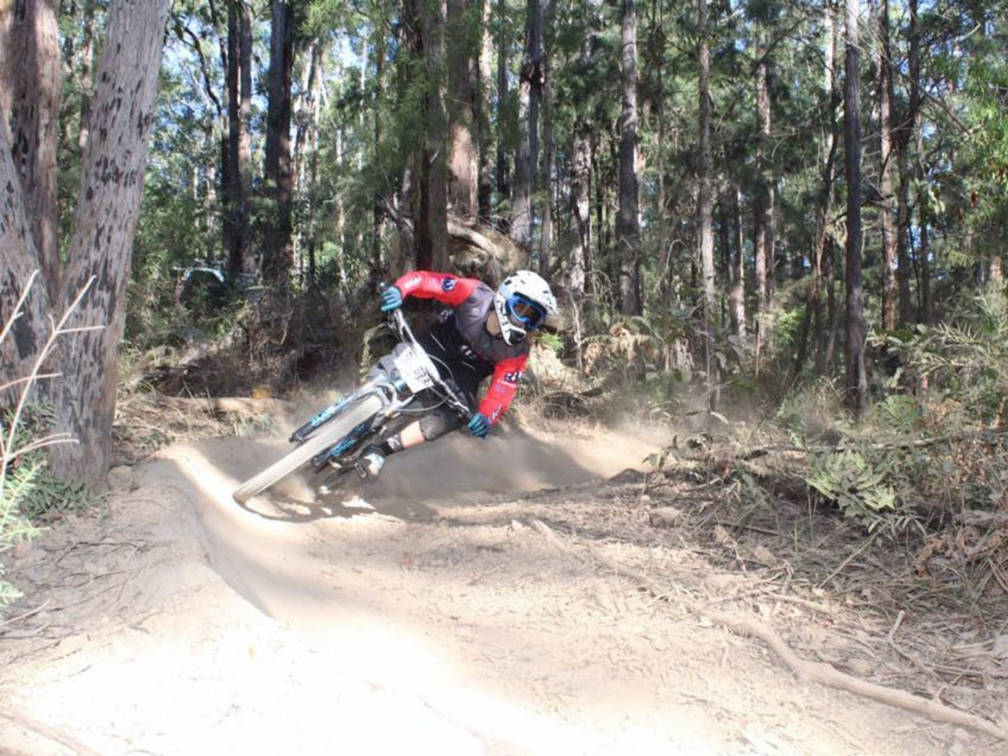 Jolly Nose Mountain Bike Park - Surfers Paradise Gold Coast