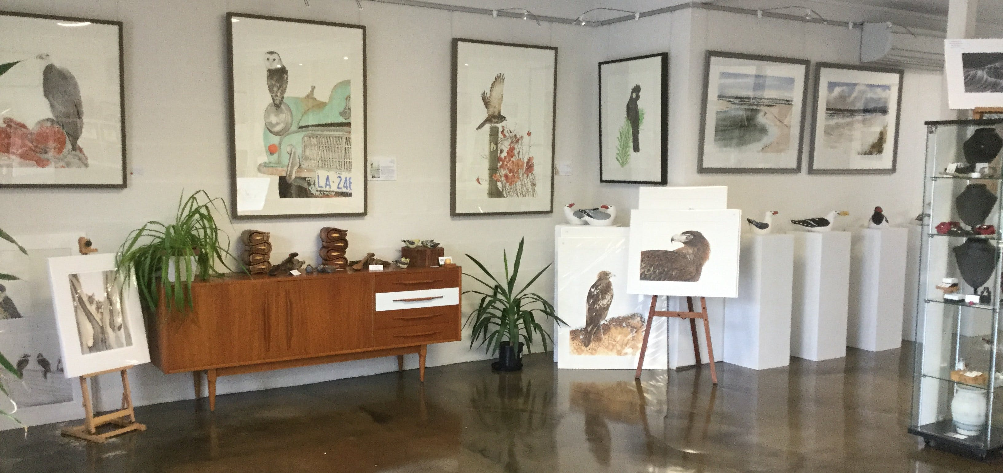 Waubs Bay Gallery - Surfers Paradise Gold Coast