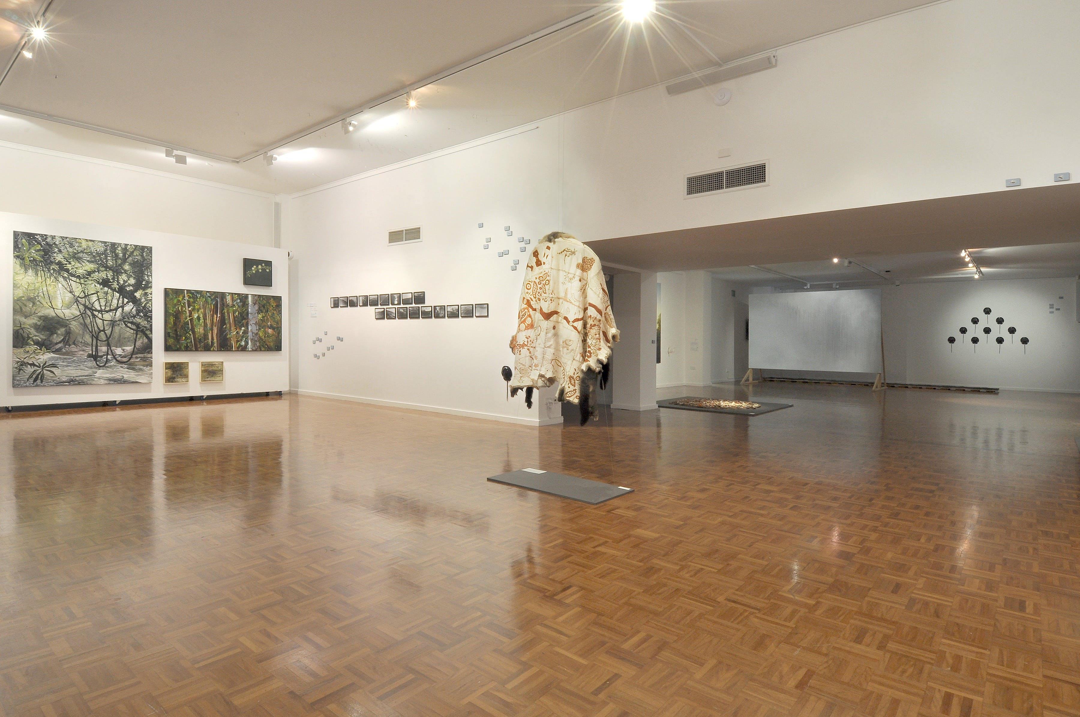 Noosa Regional Gallery - Surfers Paradise Gold Coast
