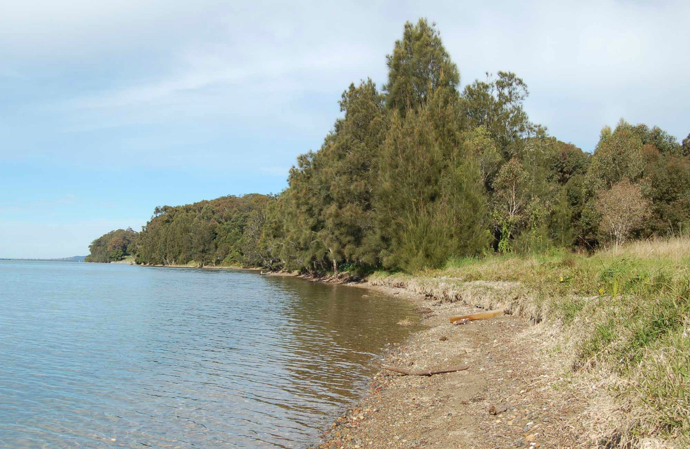 Lake Macquarie State Conservation Area - Surfers Paradise Gold Coast