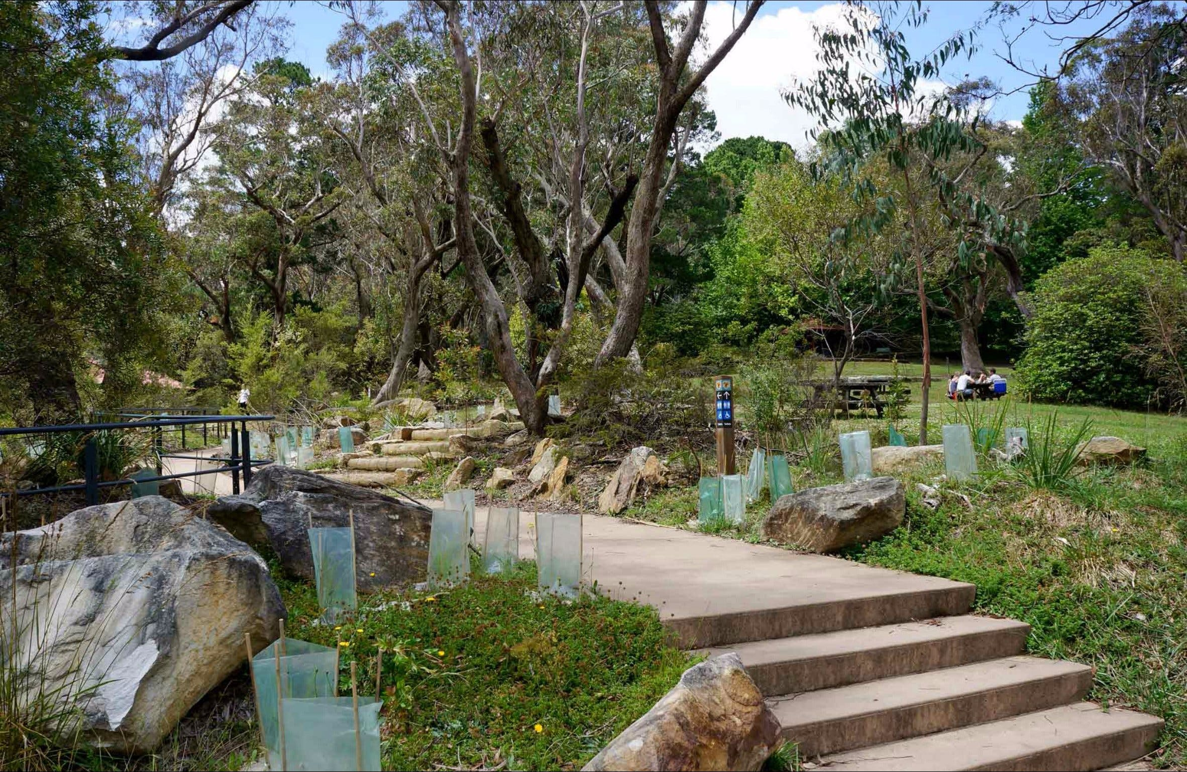 Wentworth Falls picnic area - Surfers Paradise Gold Coast