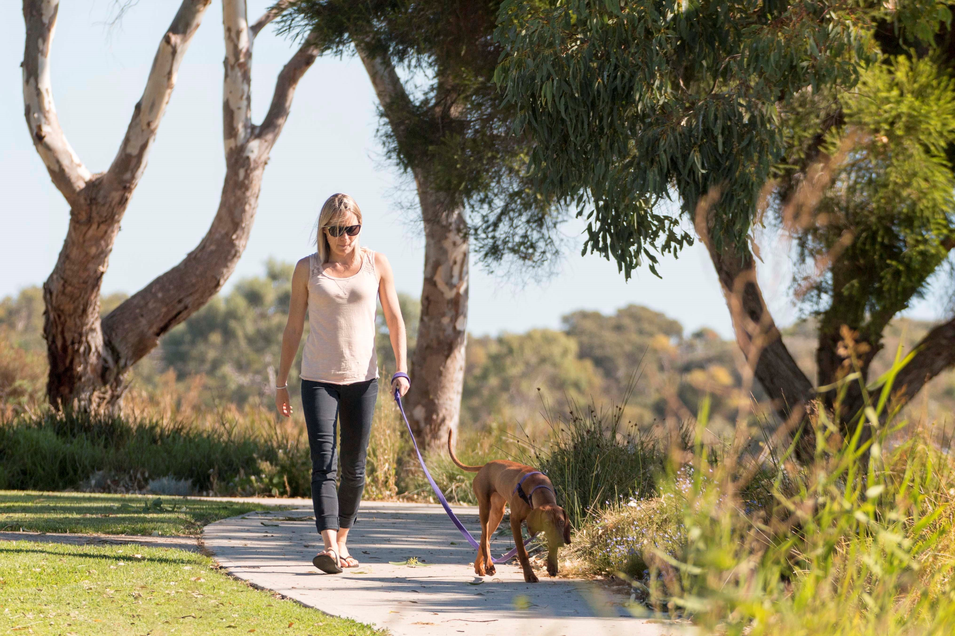 Meningie Walking and Cycling Trails - Surfers Paradise Gold Coast