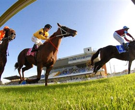 Wyong Race Club - Surfers Paradise Gold Coast