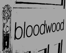 Bloodwood - Surfers Paradise Gold Coast