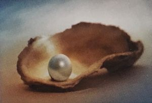 Lecture Cancelled  ADFAS  Lecture Half-Day - Patricia Law speaking on Pearls and Diamonds - Surfers Paradise Gold Coast