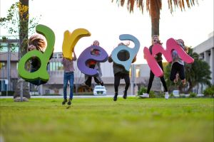 Macquarie Credit Union DREAM Festival - Surfers Paradise Gold Coast