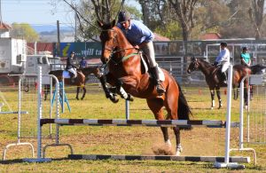 Glen Innes Pastoral and Agricultural Show - Surfers Paradise Gold Coast