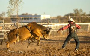 Walgett Charity Bushman's Carnival Rodeo and Campdraft - Surfers Paradise Gold Coast