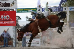 Stroud Rodeo and Campdraft - Surfers Paradise Gold Coast
