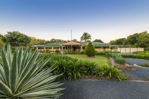 Bonville Lodge Bed  Breakfast - Surfers Paradise Gold Coast